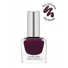 Colorbar CFD219 Flash Dry Nail Lacquer, Plumtastic 219, 12ml <small>(Shipping Per: MK33.90)</small>