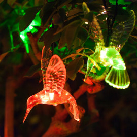 Citra 20 Led Battery Operated Humming Bird Crystal Copper String Light for Kids Room and Diwali and Other Festival Decorations <small>(Shipping Per: MK492.80)</small>